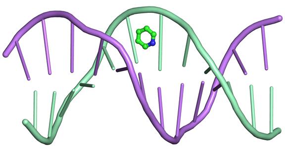 Повреждение молекулы ДНК, приводящее к раку легких